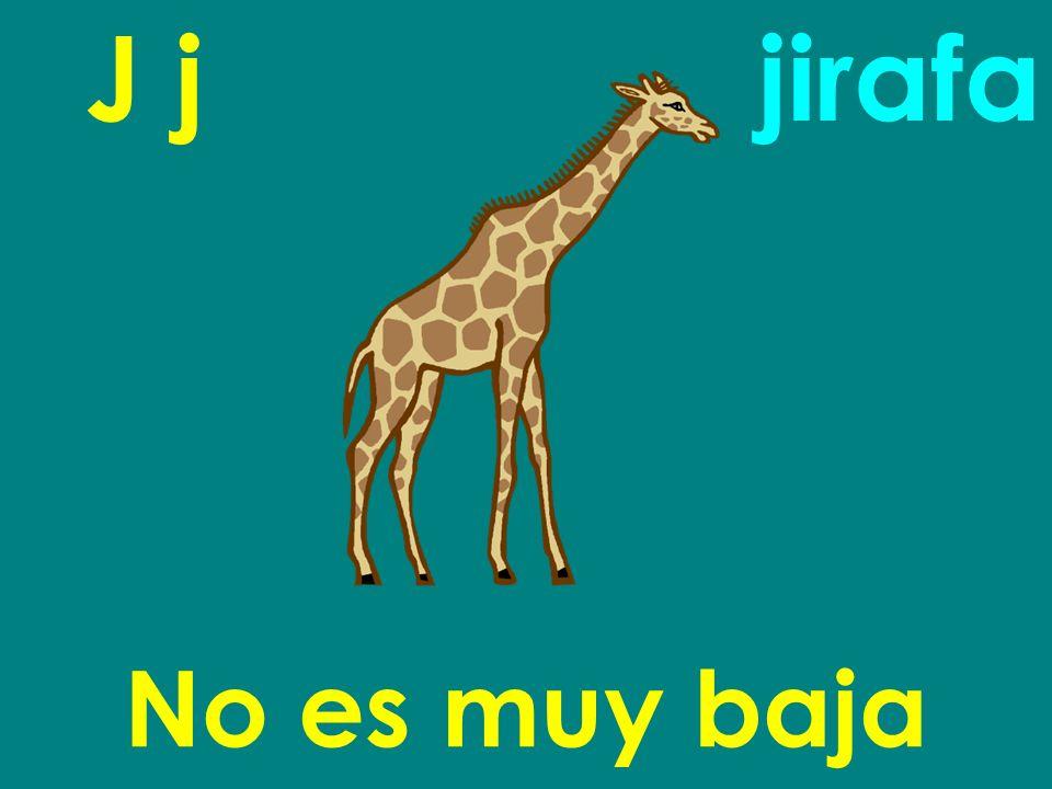J j No es muy baja jirafa
