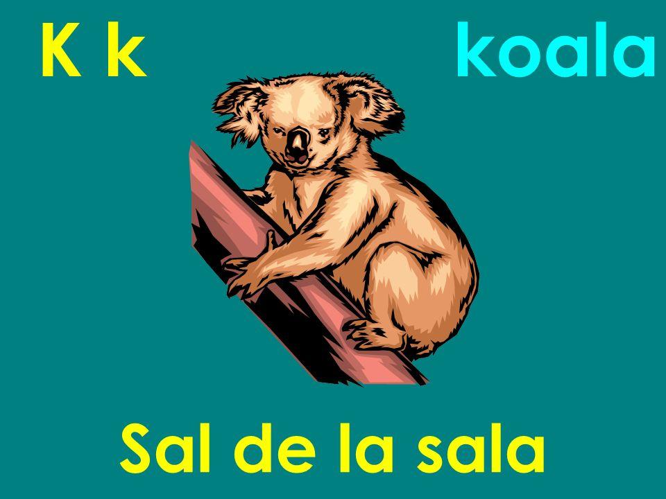 K k Sal de la sala koala
