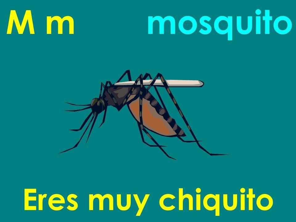 M m Eres muy chiquito mosquito