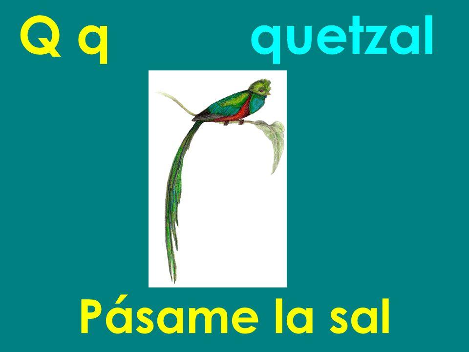 Q q Pásame la sal quetzal