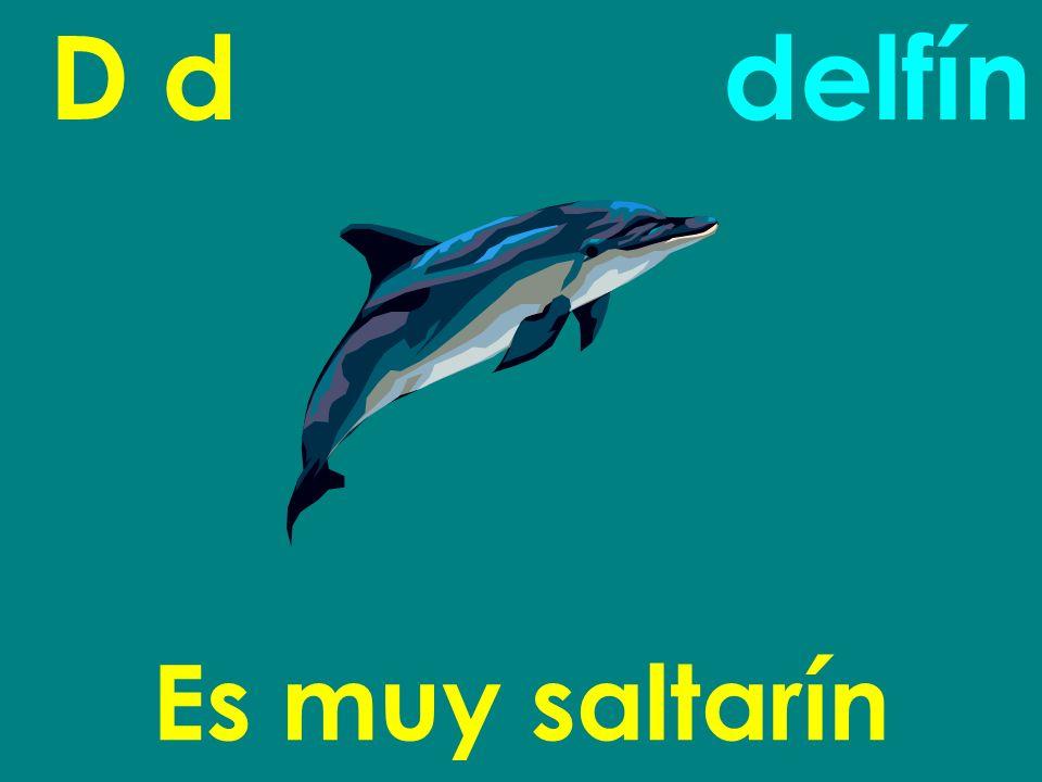 D d Es muy saltarín delfín