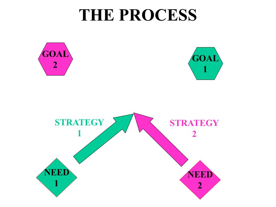 THE PROCESS GOAL 1 GOAL 2 NEED 1 NEED 2 STRATEGY 1 STRATEGY 2