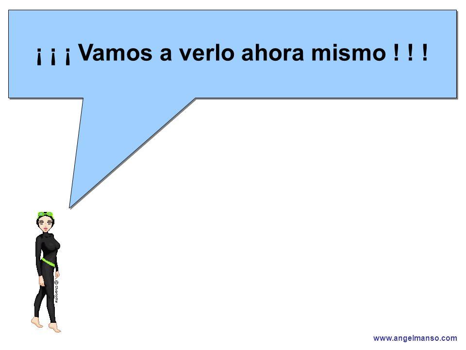 www.angelmanso.com Esta presentación pertenece a Angel Manso Madrid, domingo 1 de octubre de 2006 ¡ ¡ ¡ Vamos a verlo ahora mismo .