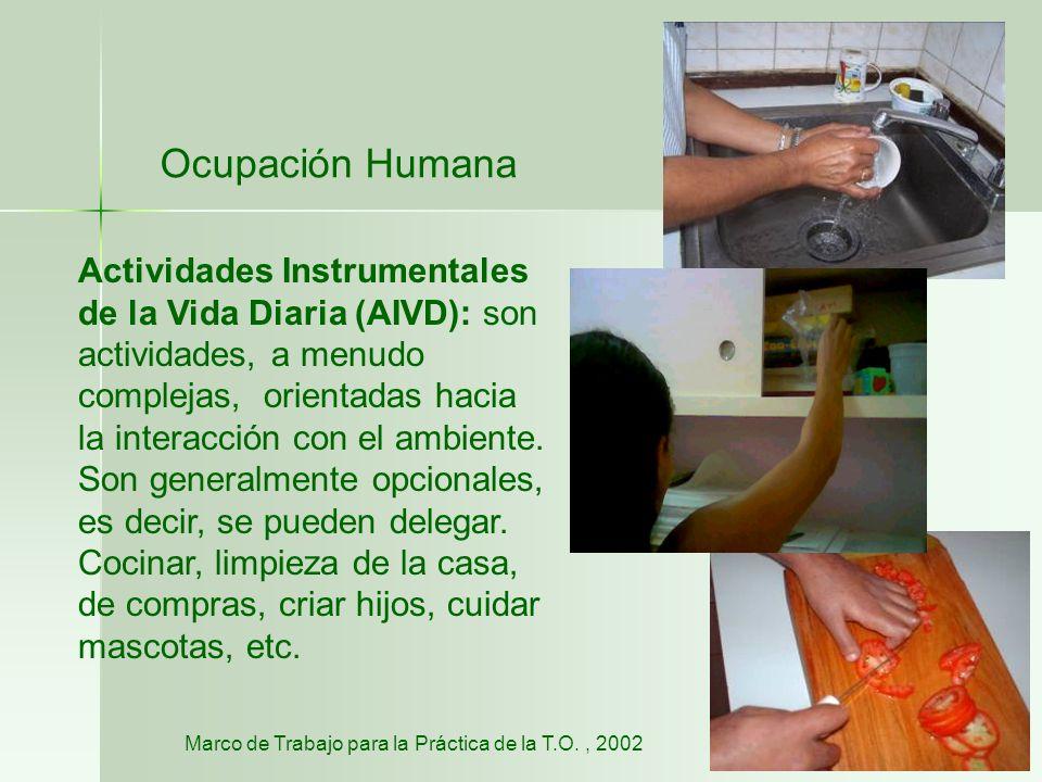 Ocupación Humana Actividades Instrumentales de la Vida Diaria (AIVD): son actividades, a menudo complejas, orientadas hacia la interacción con el ambi