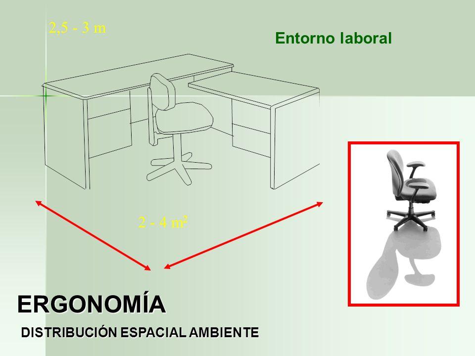 2 - 4 m 2 2,5 - 3 m DISTRIBUCIÓN ESPACIAL AMBIENTE ERGONOMÍA Entorno laboral