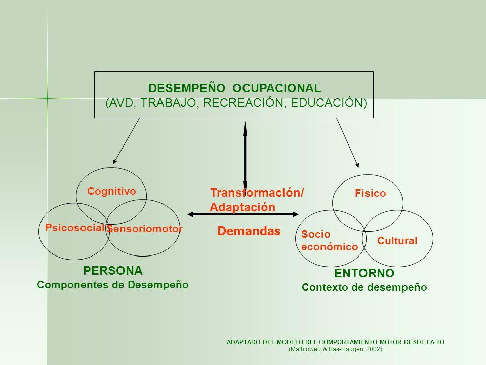 DESEMPEÑO OCUPACIONAL (AVD, TRABAJO, RECREACIÓN, EDUCACIÓN) Cognitivo Psicosocial Sensoriomotor Físico Socio económico Cultural PERSONA Componentes de
