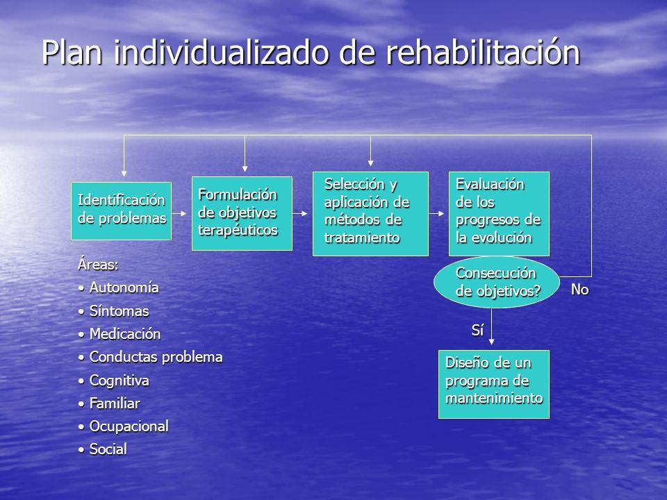 Plan individualizado de rehabilitación Identificación de problemas Formulación de objetivos terapéuticos Selección y aplicación de métodos de tratamiento Evaluación de los progresos de la evolución Diseño de un programa de mantenimiento Consecución de objetivos.