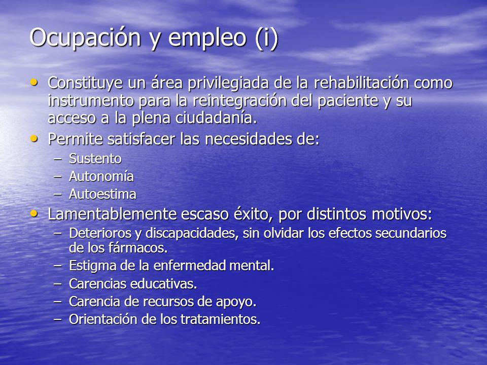 Ocupación y empleo (i) Constituye un área privilegiada de la rehabilitación como instrumento para la reintegración del paciente y su acceso a la plena ciudadanía.