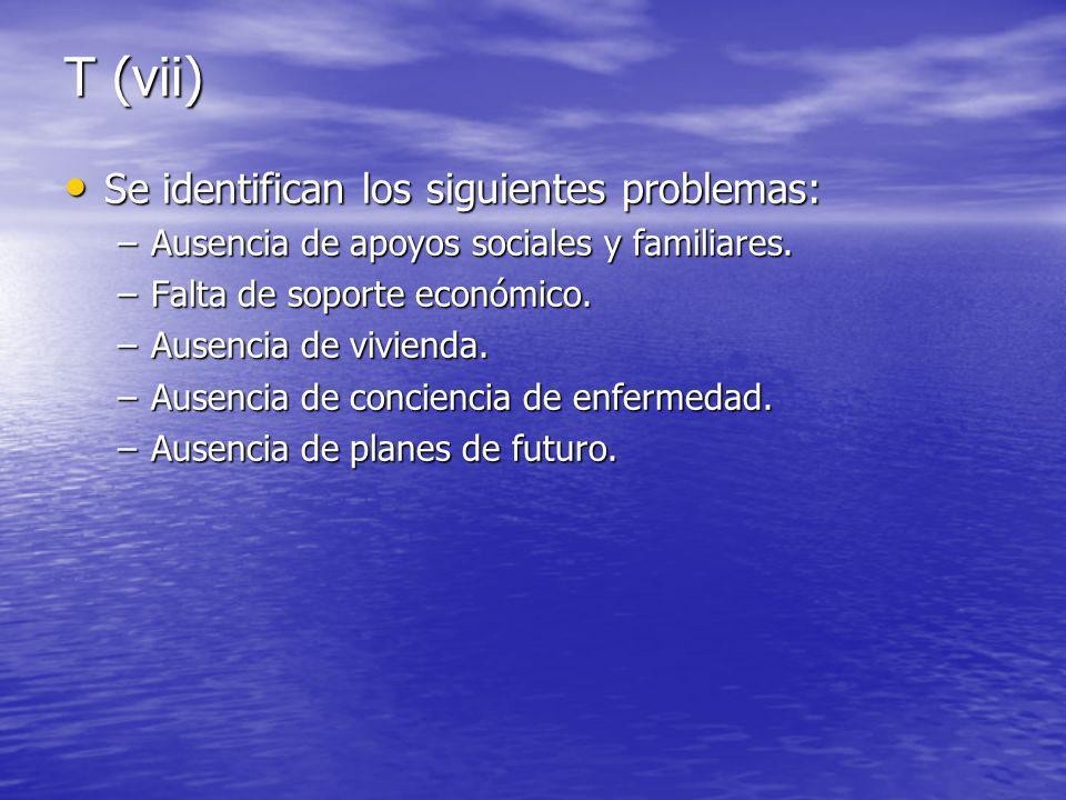 T (vii) Se identifican los siguientes problemas: Se identifican los siguientes problemas: –Ausencia de apoyos sociales y familiares.