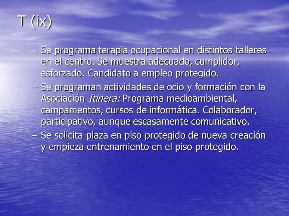 T (ix) –Se programa terapia ocupacional en distintos talleres en el centro.