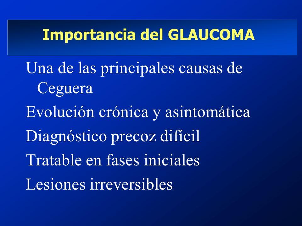 Importancia del GLAUCOMA Una de las principales causas de Ceguera Evolución crónica y asintomática Diagnóstico precoz difícil Tratable en fases inicia