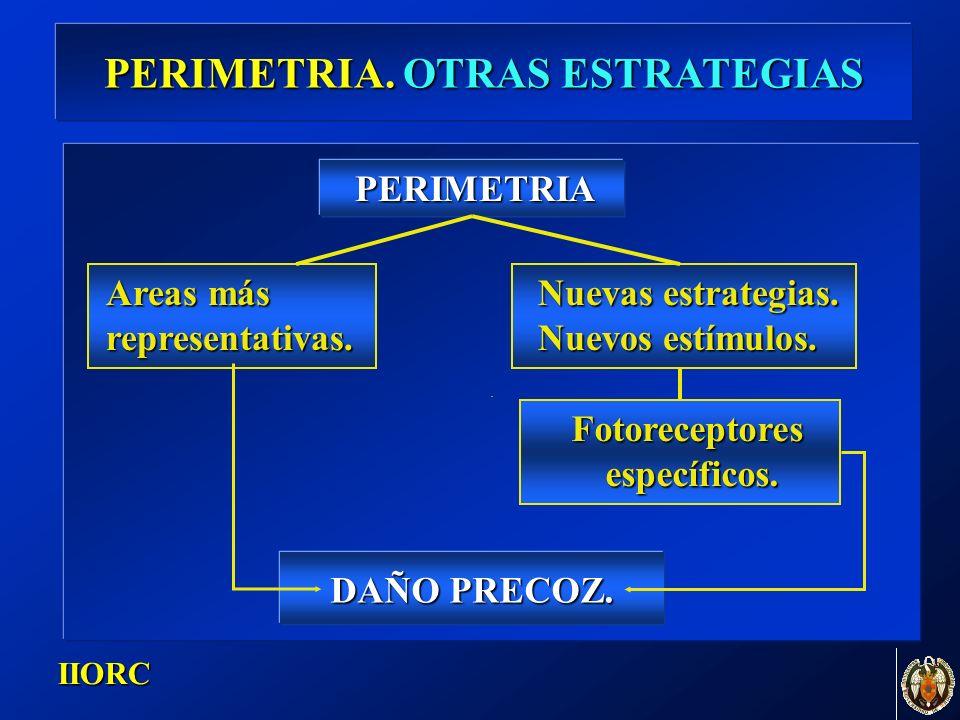 . IIORC PERIMETRIA. OTRAS ESTRATEGIAS Areas más representativas. Nuevas estrategias. Nuevos estímulos. PERIMETRIA Fotoreceptores específicos. específi