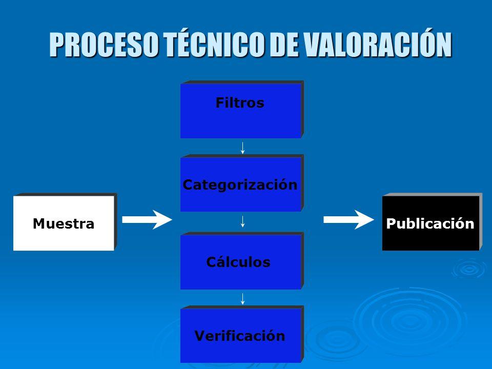 PROCESO TÉCNICO DE VALORACIÓN Muestra Filtros Categorización Cálculos Publicación Verificación