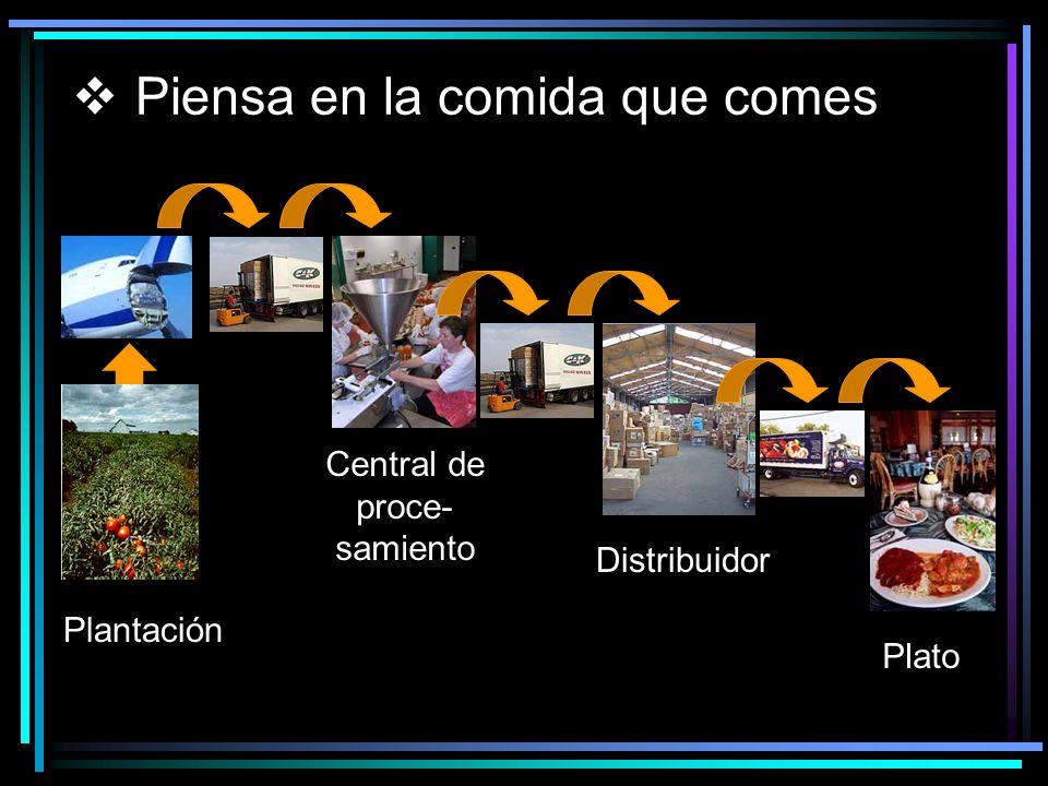 Piensa en la comida que comes Central de proce- samiento Plantación Distribuidor Plato