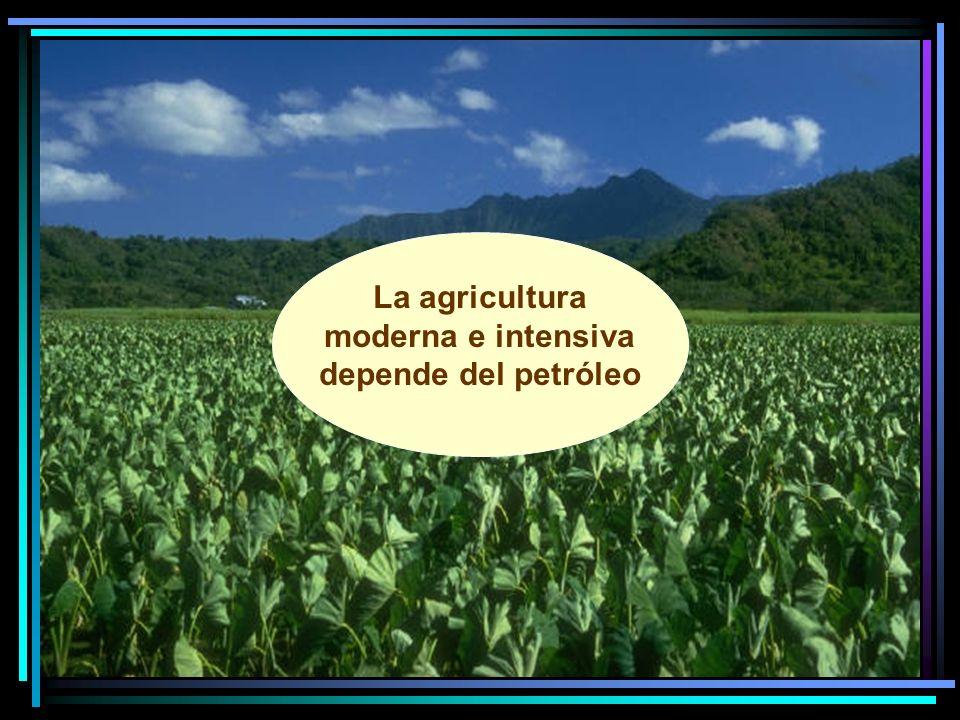 La agricultura moderna e intensiva depende del petróleo