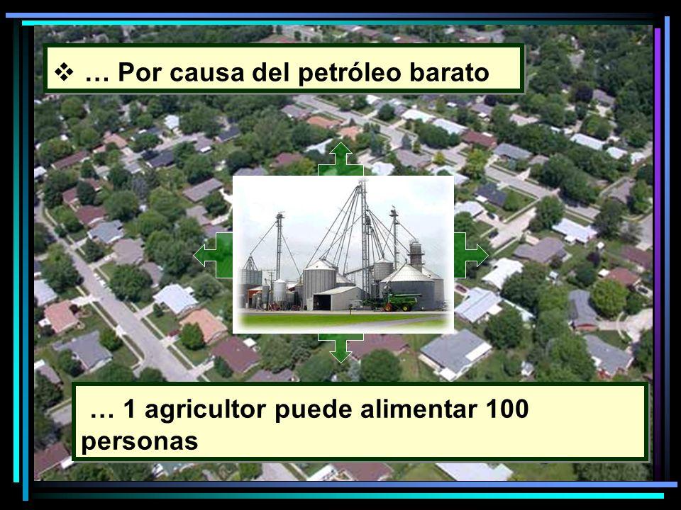 … Por causa del petróleo barato … 1 agricultor puede alimentar 100 personas