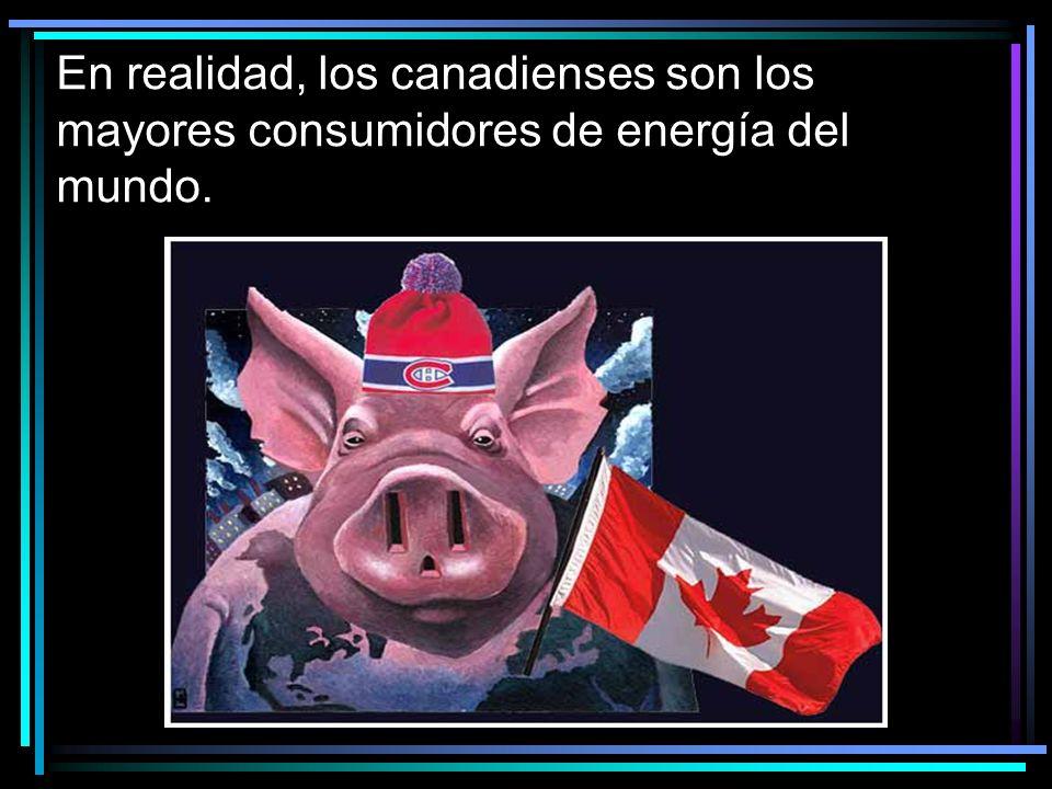 En realidad, los canadienses son los mayores consumidores de energía del mundo.