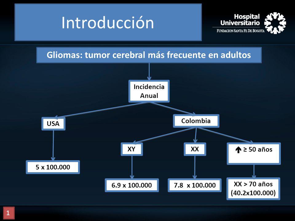 Incidencia Anual USA Colombia 6.9 x 100.0007.8 x 100.000 50 años XX > 70 años (40.2x100.000) XYXX 5 x 100.000 Gliomas: tumor cerebral más frecuente en