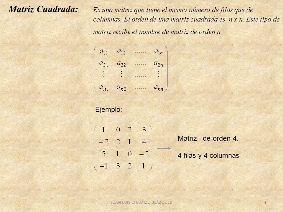 JUAN LUIS CHAMIZO BLÁZQUEZ4 Matriz Cuadrada: Es una matriz que tiene el mismo número de filas que de columnas. El orden de una matriz cuadrada es n x