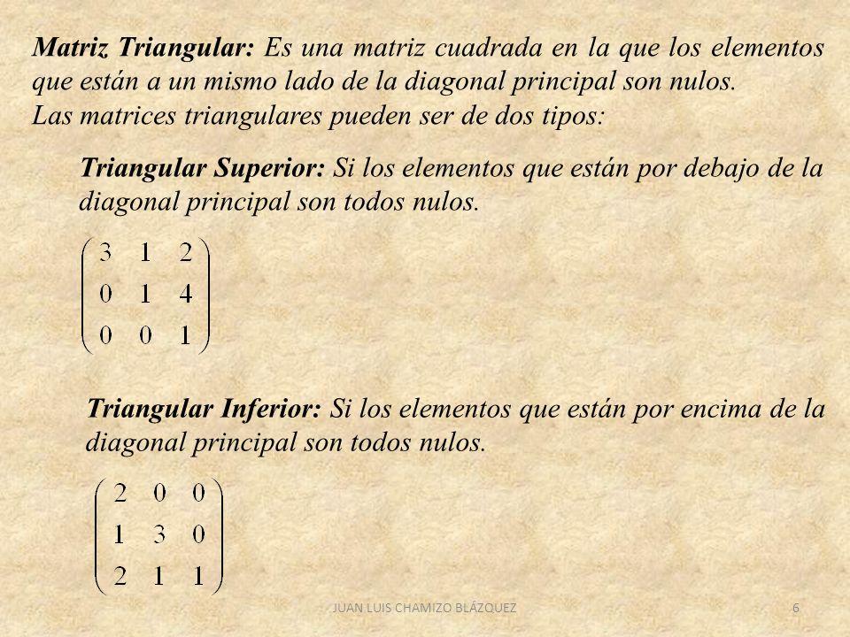 JUAN LUIS CHAMIZO BLÁZQUEZ6 Matriz Triangular: Es una matriz cuadrada en la que los elementos que están a un mismo lado de la diagonal principal son n