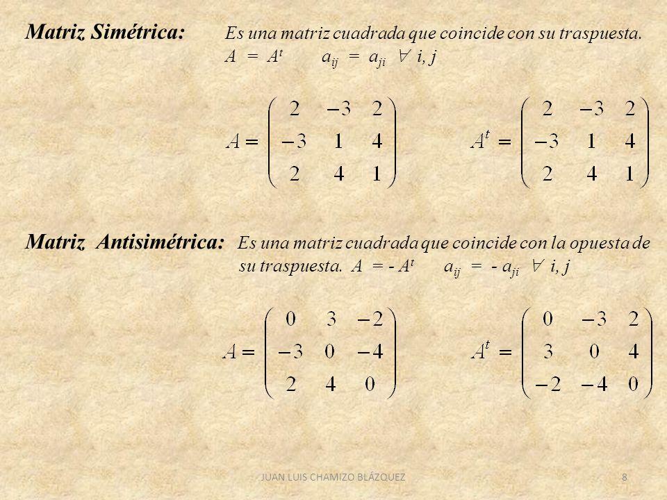 JUAN LUIS CHAMIZO BLÁZQUEZ8 Matriz Simétrica: Es una matriz cuadrada que coincide con su traspuesta. A = A t a ij = a ji i, j Matriz Antisimétrica: Es