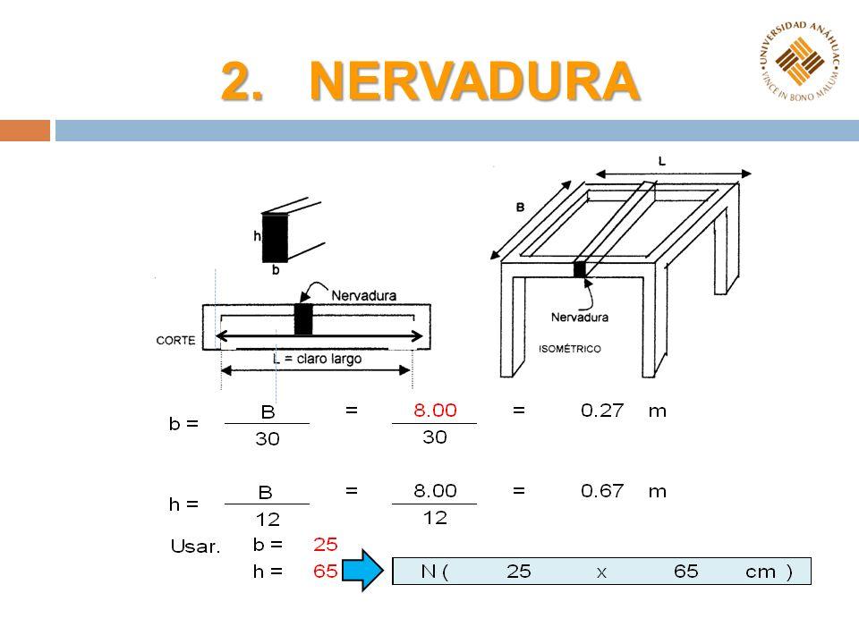 2. NERVADURA