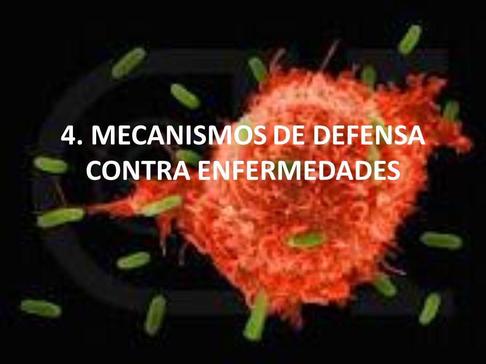 1.Los mecanismos de defensa contra enfermedades Mecanismo inespecífico Pie l Mucos as Inflamaci ón Sustancias desinfectan tes Aplicació n de calor Estudiar descripciones del libro