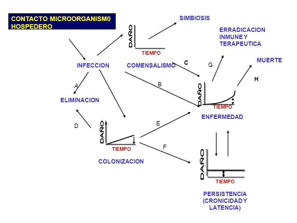 CONTACTO MICROORGANISM0 HOSPEDERO TIEMPO COMENSALISMO SIMBIOSIS INFECCION A ELIMINACION D G ERRADICACION INMUNE Y TERAPEUTICA MUERTE H C B F E TIEMPO