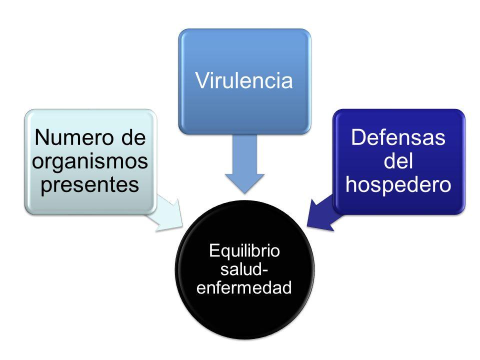 Equilibrio salud- enfermedad Numero de organismos presentes Virulencia Defensas del hospedero