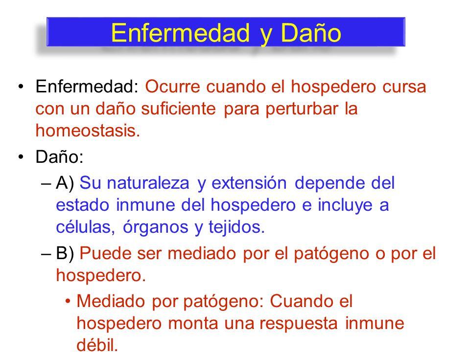 Enfermedad y Daño Enfermedad: Ocurre cuando el hospedero cursa con un daño suficiente para perturbar la homeostasis. Daño: –A) Su naturaleza y extensi