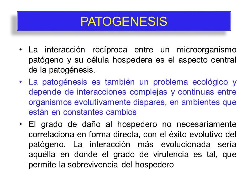 PATOGENESIS La interacción recíproca entre un microorganismo patógeno y su célula hospedera es el aspecto central de la patogénesis. La patogénesis es