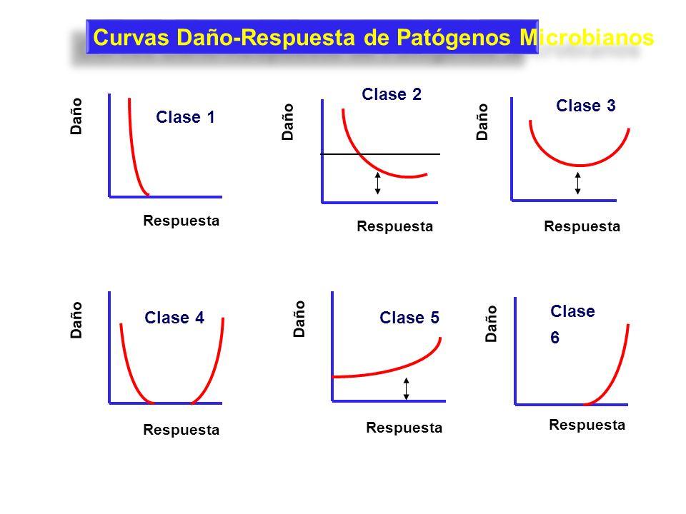 Curvas Daño-Respuesta de Patógenos Microbianos Daño Respuesta Clase 2 Daño Respuesta Clase 3 Daño Respuesta Clase 1 Daño Respuesta Clase 4 Daño Respue