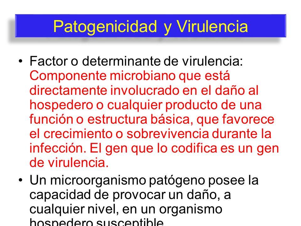 Factor o determinante de virulencia: Componente microbiano que está directamente involucrado en el daño al hospedero o cualquier producto de una funci