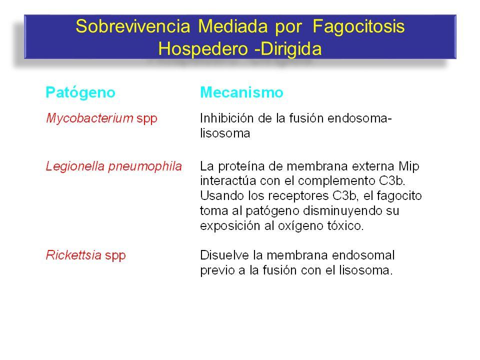 Sobrevivencia Mediada por Fagocitosis Hospedero -Dirigida