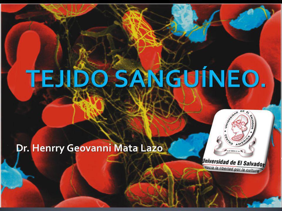 La sangre es un liquido ligeramente alcalino (pH, 7.4).