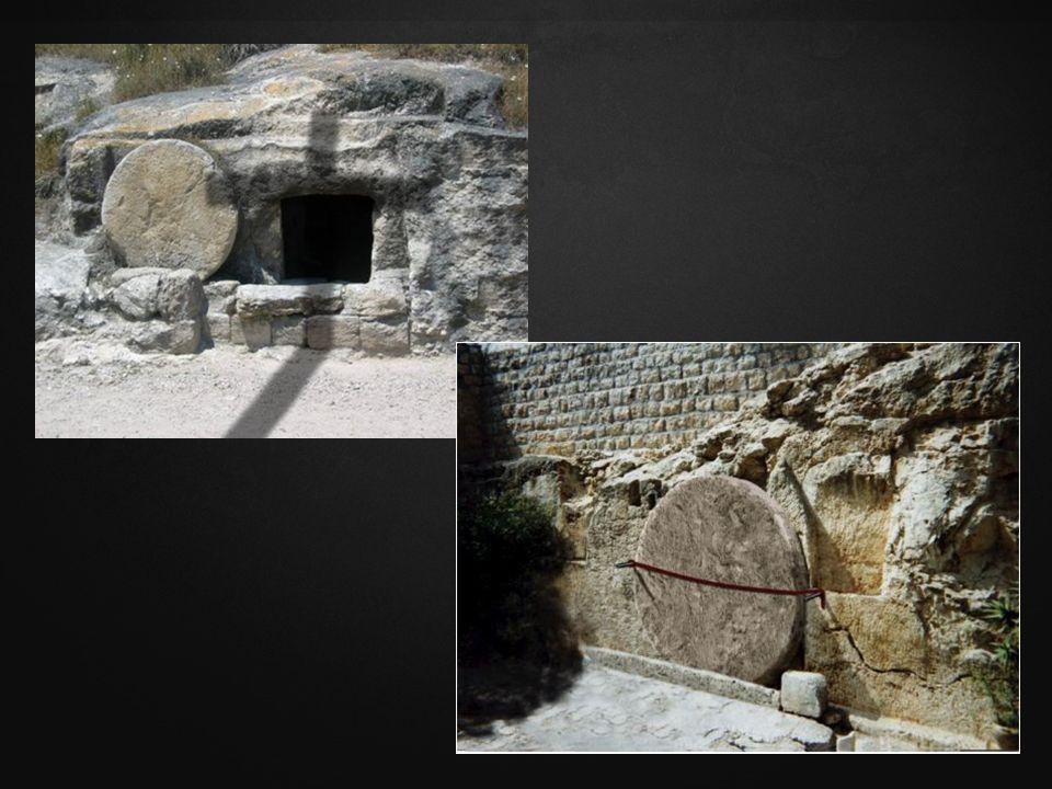 Pero sabemos que el Hijo de Dios ha venido, y nos ha dado entendimiento para conocer al que es verdadero; y estamos en el verdadero, en su Hijo Jesucristo.