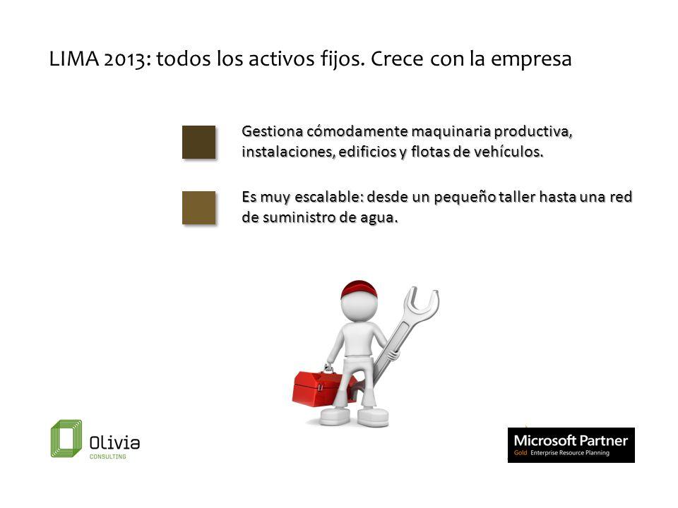 LIMA 2013: todos los activos fijos. Crece con la empresa Es muy escalable: desde un pequeño taller hasta una red de suministro de agua. Gestiona cómod