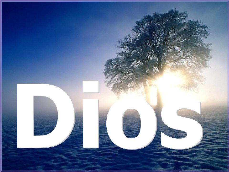 ES DIOS que toma siempre… nuestros problemas en Sus Manos… y nos ayuda a resolverlos
