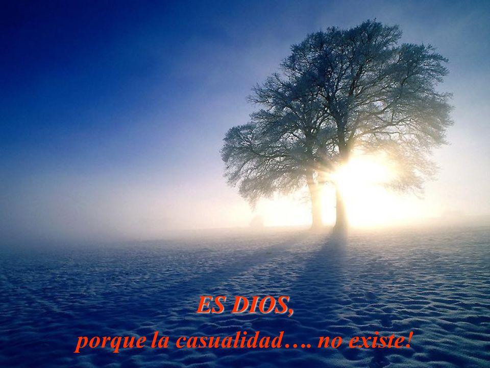 ES DIOS, porque la casualidad…. no existe!