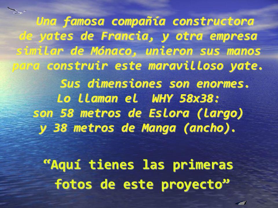 Una famosa compañía constructora de yates de Francia, y otra empresa similar de Mónaco, unieron sus manos para construir este maravilloso yate.
