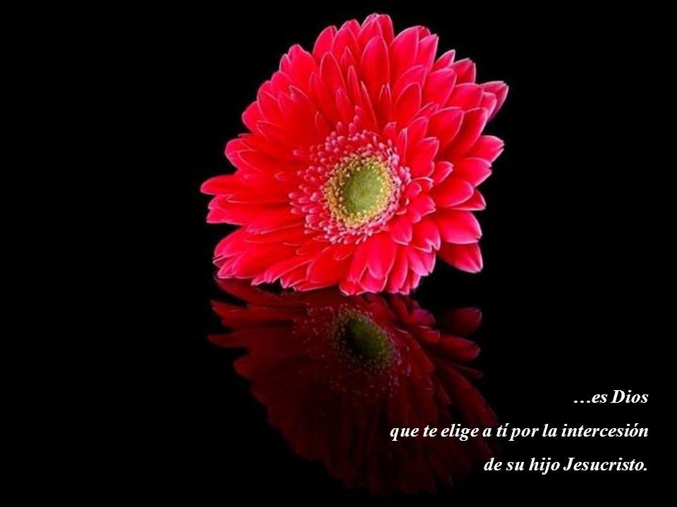 …es Dios que está siempre junto a tí y te acompaña con amor en el camino de tu vida.