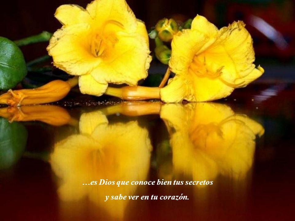 …es Dios que conoce bien tus secretos y sabe ver en tu corazón.
