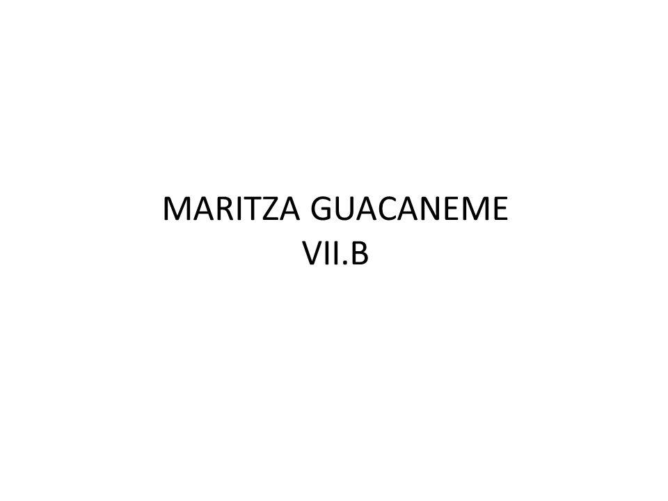 MARITZA GUACANEME VII.B