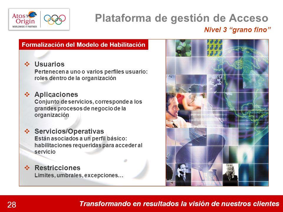 Transformando en resultados la visión de nuestros clientes 28 Plataforma de gestión de Acceso Nivel 3 grano fino Algunos datos de la magnitud del proy