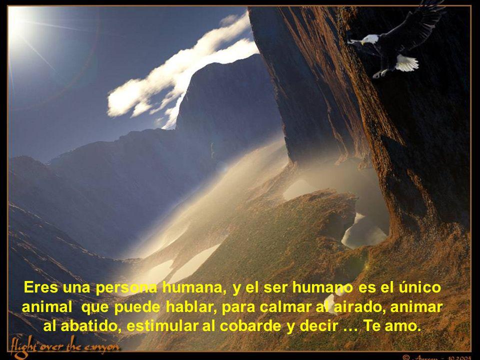 Eres una persona humana, y el ser humano es el único animal que puede hablar, para calmar al airado, animar al abatido, estimular al cobarde y decir … Te amo.