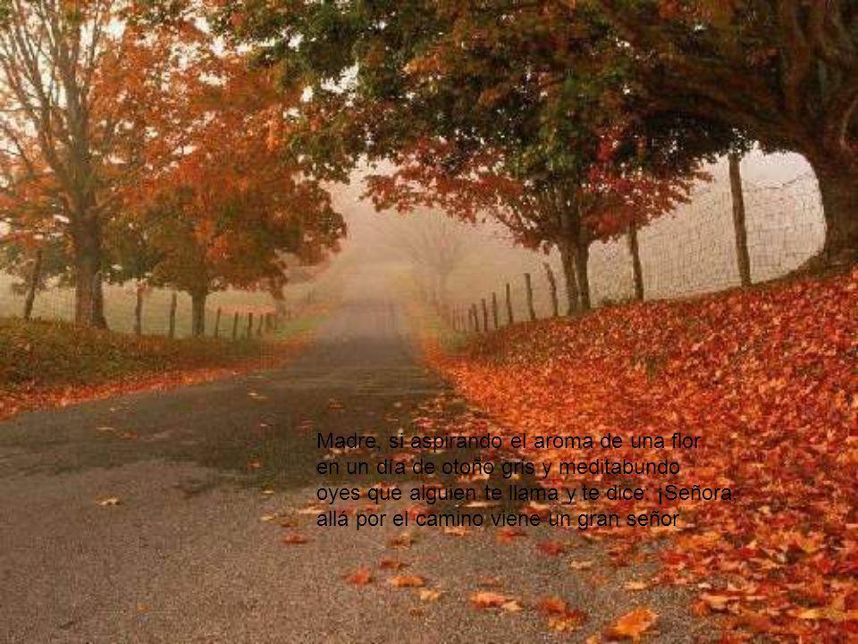 Madre, si aspirando el aroma de una flor en un día de otoño gris y meditabundo oyes que alguien te llama y te dice: ¡Señora, allá por el camino viene