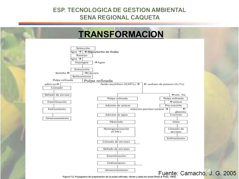 TRANSFORMACION Fuente: Camacho, J. G. 2005