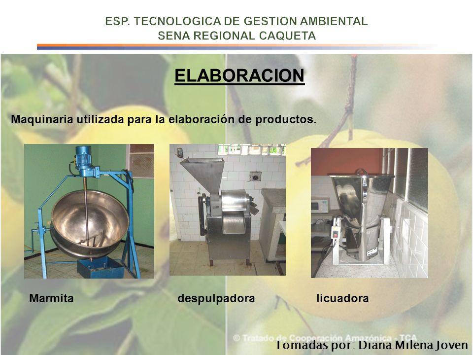 ELABORACION Maquinaria utilizada para la elaboración de productos. Marmita despulpadora licuadora Tomadas por: Diana Milena Joven