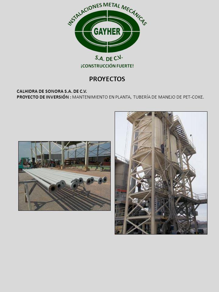 PROYECTOS CALHIDRA DE SONORA S.A. DE C.V. PROYECTO DE INVERSIÓN : MANTENIMIENTO EN PLANTA, TUBERÍA DE MANEJO DE PET-COKE.