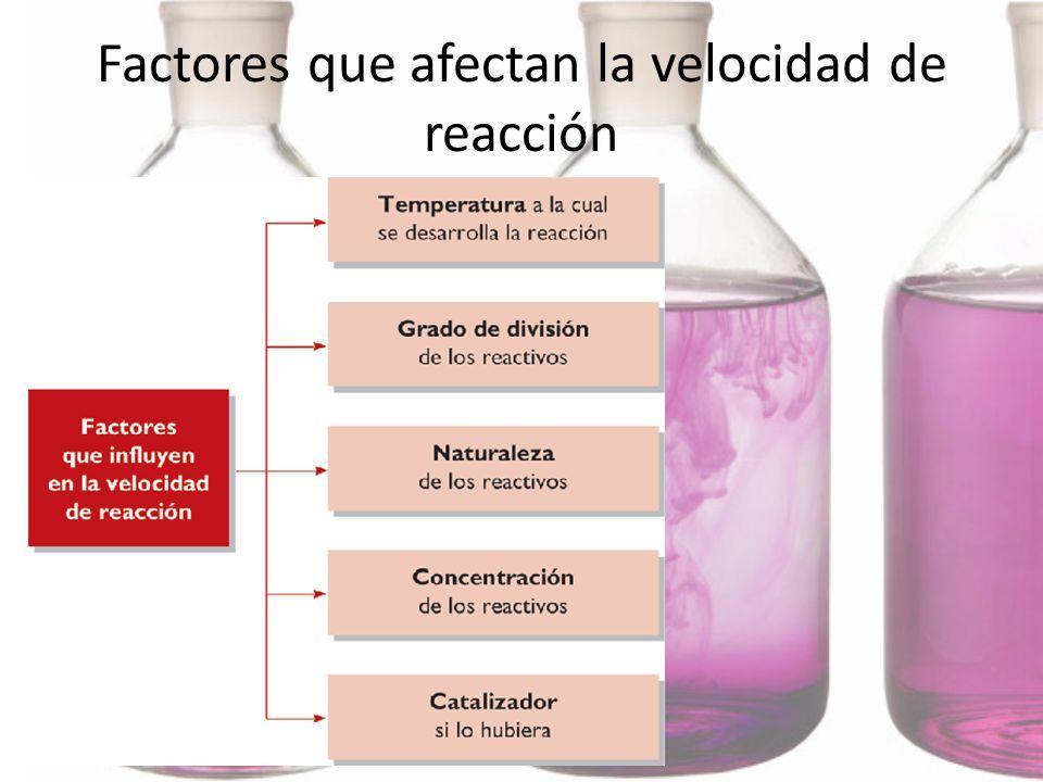 Factores que afectan la velocidad de reacción